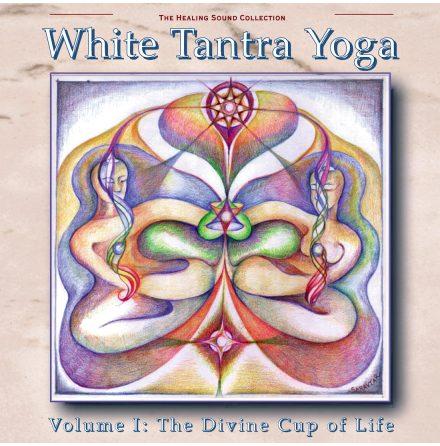 White Tantra Yoga Vol I - CD av blandade artister